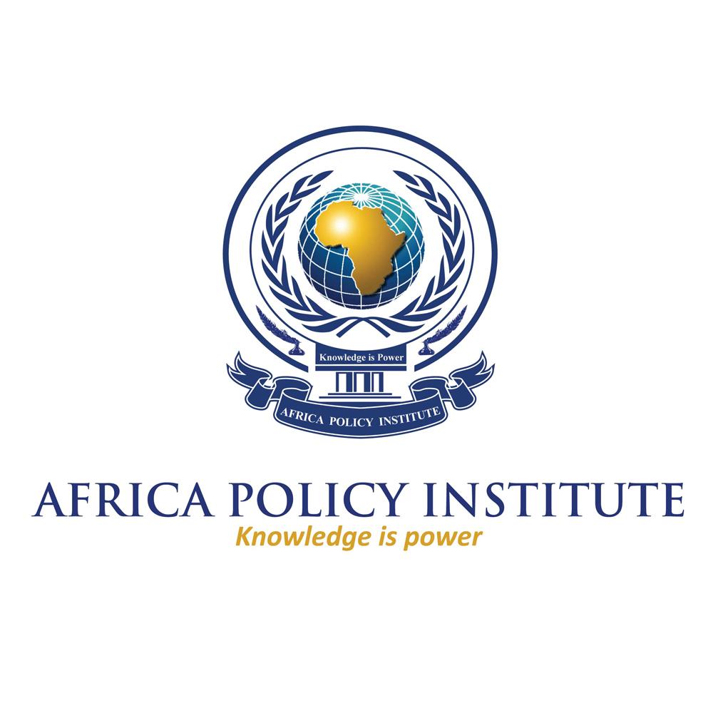Africa Policy Institute